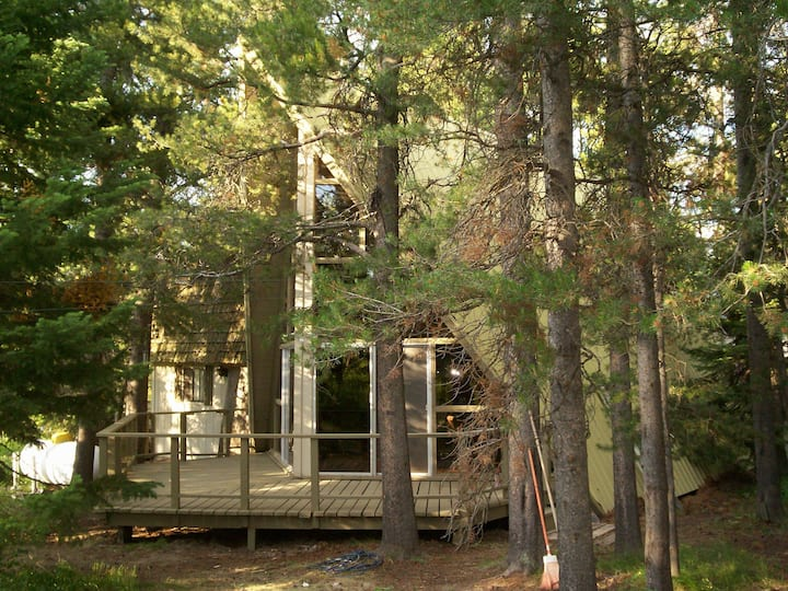 Fun Family Cabin  20 Minutes from Yellowstone