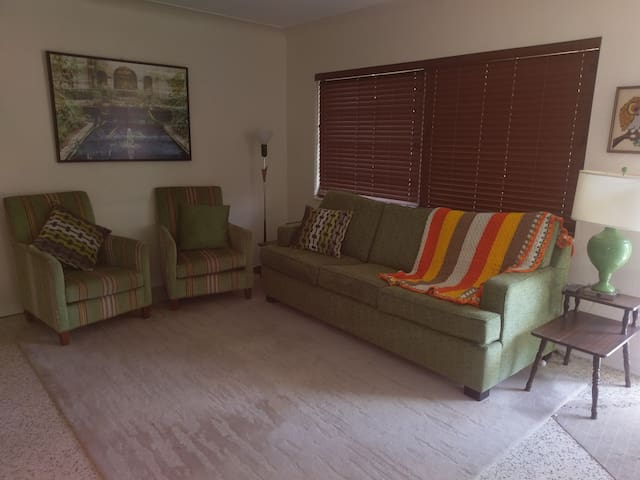 Living room, the couch is a sofa bed