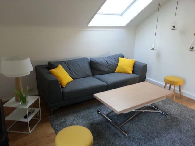 Joli T2 agréable et cosy, proche contournement - Thonon-les-Bains - Apartemen