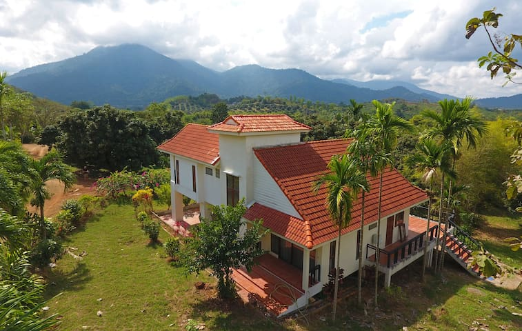Aerial view towards West. 1st floor bedroom to the left, ground floor bedroom in lower center of picture, main terrace behind house.