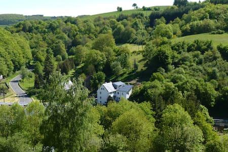 Sehr große Eifel Ferienwohnung, nähe Luxemburg - Zweifelscheid - 公寓