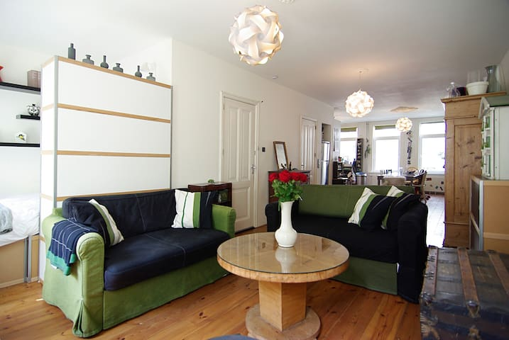 Cozy apt. in A'dam, Pijp area!