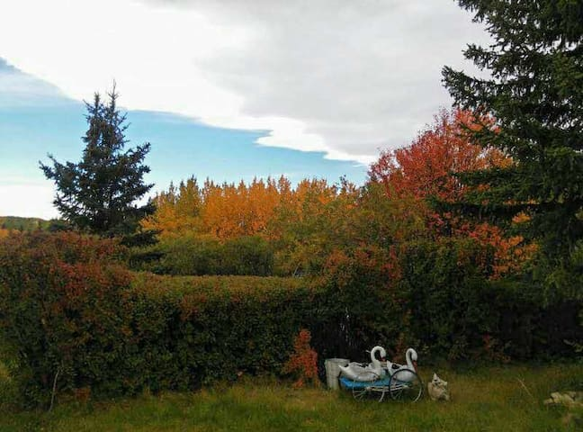 Bearspaw Entire Home - Calgary - Dom