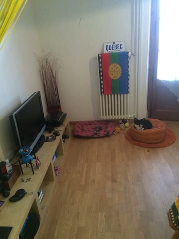 petit studio au pied de la foret - Lausanne - Vindsvåning