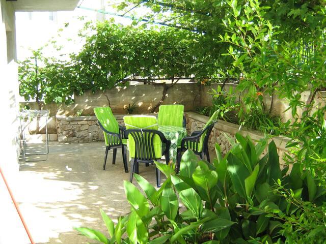 A4 back garden