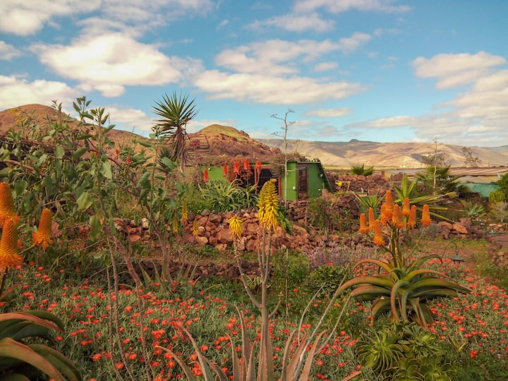 Eco - Cabin in the fields of northen Lanzarote