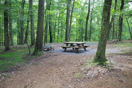 Primitive Camp Sites In The Hills Of W.VA. 1-A