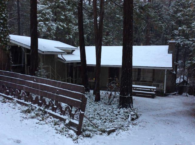 Cedar cabin - Twain Harte - Casa