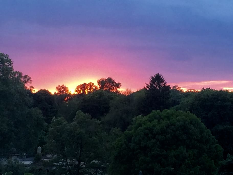 Sunset over Greenwood Cemetery