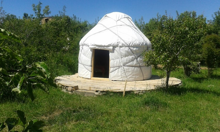 Family yurt at Bel-Zhan yurt lodge