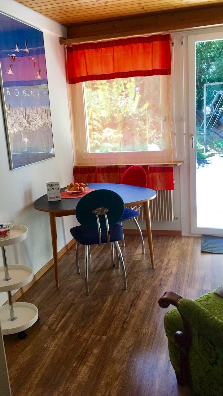 Gemütliche 2-Zimmer-Wohnung in Luzern