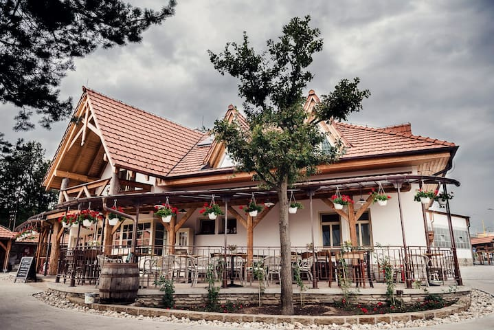 Cozy 4 room pension with private parking - Ľubotice - Bed & Breakfast