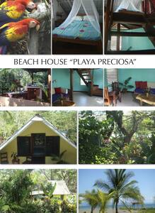 Bungalows right next to the beach - Playa Platanares