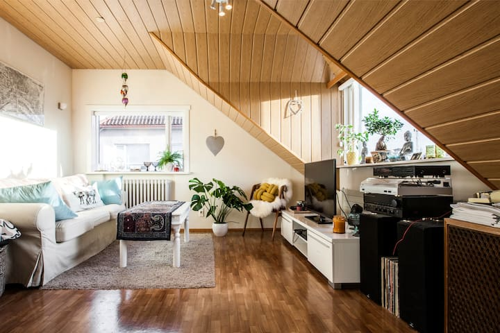 Beautiful Bright Apartment in Central of City