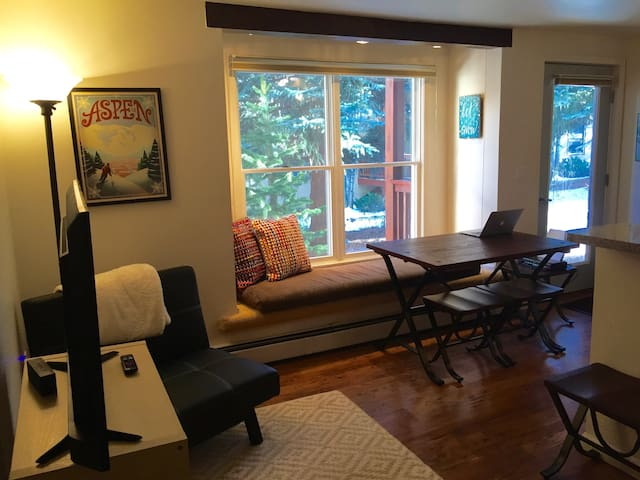 Sunny, Cozy, Pet-Friendly Aspen Apt - Aspen - Pis