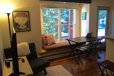 Sunny, Cozy, Pet-Friendly Aspen Apt - Aspen - Apartment