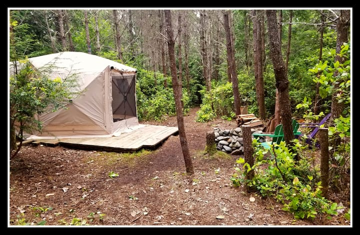 Forest Tent Yurt (1) - Covid-free Glamping
