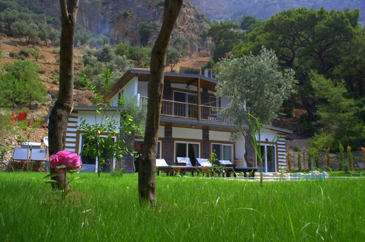Villa Bayberry Ölüdeniz