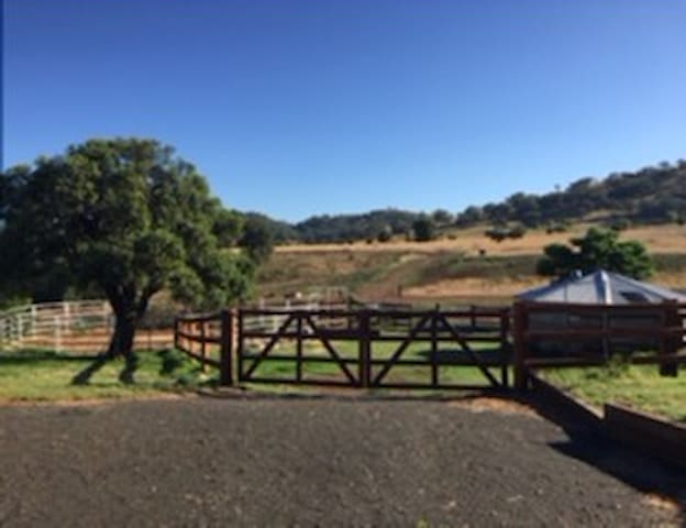 4 bed-5 acres -4 minutes to CBD- QUIET +PRIVATE