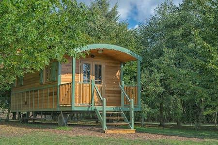 Shepherd's hut  Orchid    (chediston)
