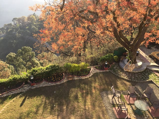 3room cottage wt breathtaking view - Kasauli - Bungalow
