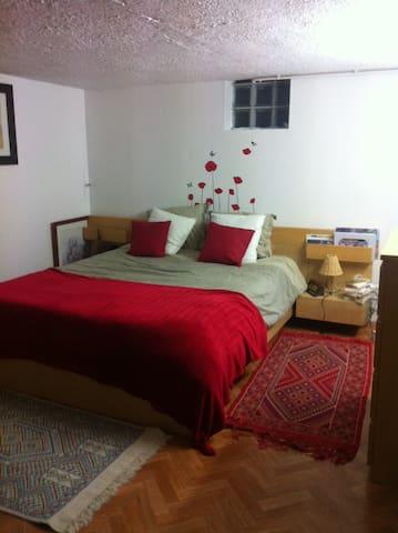grande chambre cosy - Arras - House