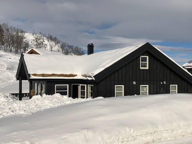 Ny hytte ski in/ski out,øverst i Rauland skisenter