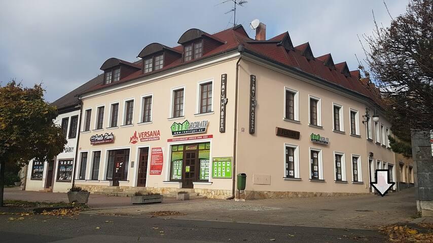 """Penzion """"Zlatý Hrozen"""" Česká Lípa - Česká Lípa"""