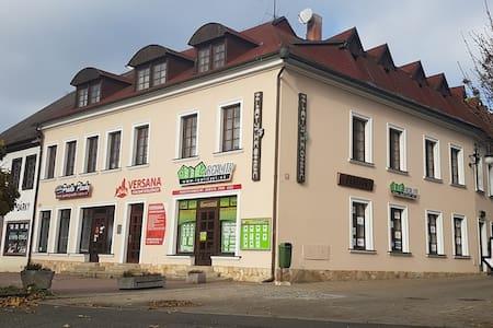 """Penzion """"Zlatý Hrozen"""" Česká Lípa - Česká Lípa - Квартира"""
