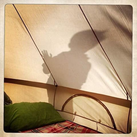 Ambers Bell Tents at Bells Farm Worcestershire