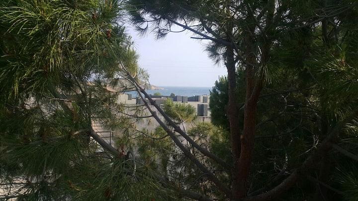 Yeni Yazlık Ev, Aylık/Sezonluk, Foça
