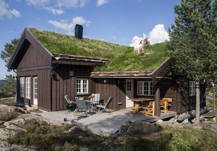 """""""Stallen"""", ei hytte i antikk stil på Blefjell"""