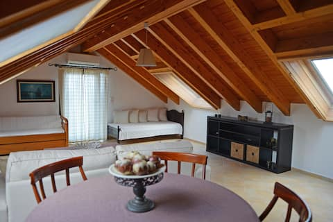 1-Bedroom Attic with Amazing View in Armenistis