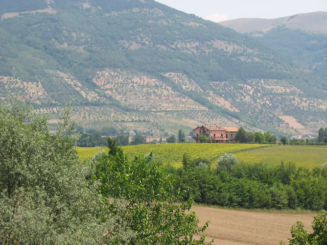 LA PACE B&B - Gubbio - Bed & Breakfast