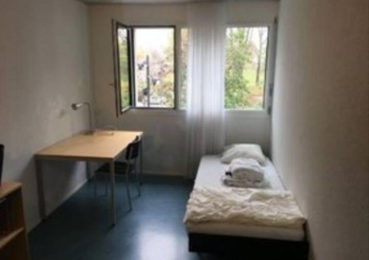 Room in Zurich