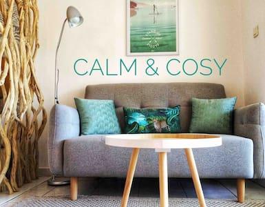 Calm & Cosy : Magnifique T1 , proche CHU