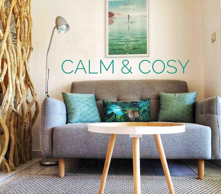 Calm & Cosy : Magnifique T1 , très bien situé.