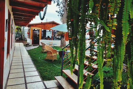 Los jardines de Manú Misky II