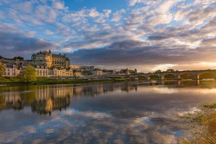 Amboise castle view, Cozy, Calm, Wifi, Netflix