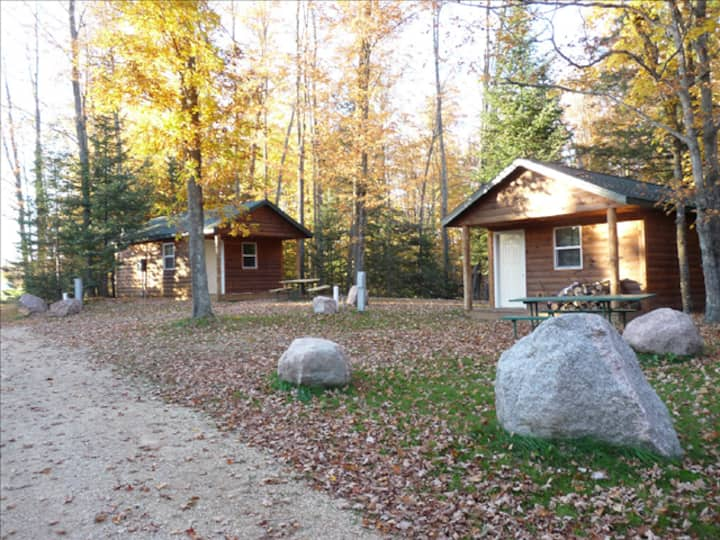Back to nature cabin in a kid-Friendly FUN place.