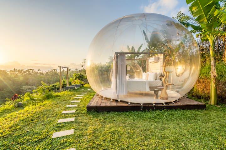Romantic Bubble Dome with jungle view