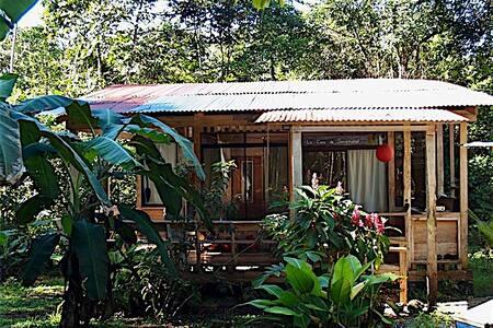Casa de la Serenidad en la Selva de Longo Maï