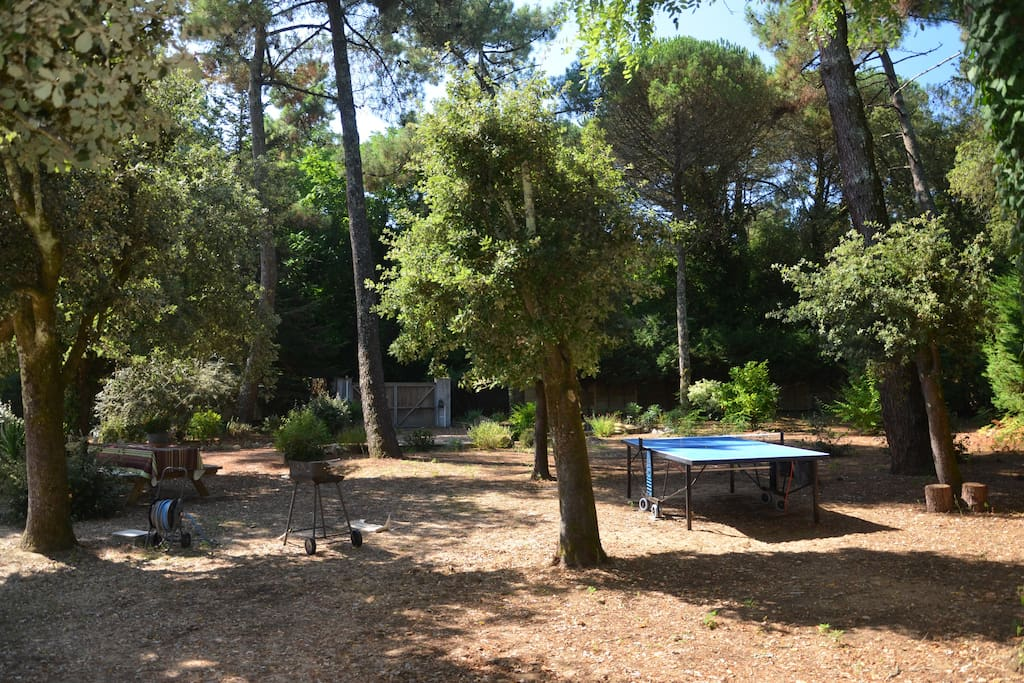 aire ombragée : ping pong , barbecue , table ..