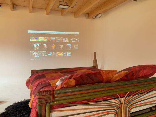 Netflix, amazonPrime, sur VideoProjecteur, avec un son Bose de 4.1