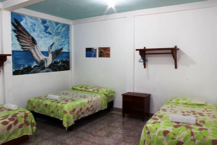 Habitación Compartida 4 personas /Conoce amigos