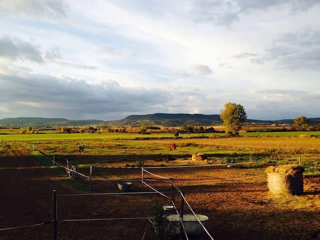 Balatonfelvidéki élmény - Kõvágóörs - Casa