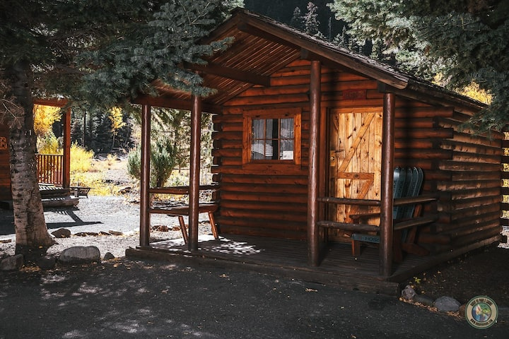 Camping Cabin #9 (Pet Friendly)