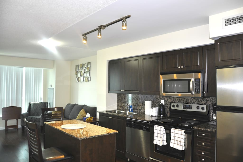 One Bedroom Apartment For Rent Downtown Toronto