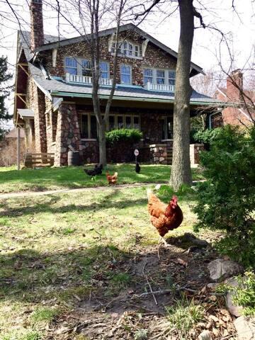 Artist Collective and Urban Farm