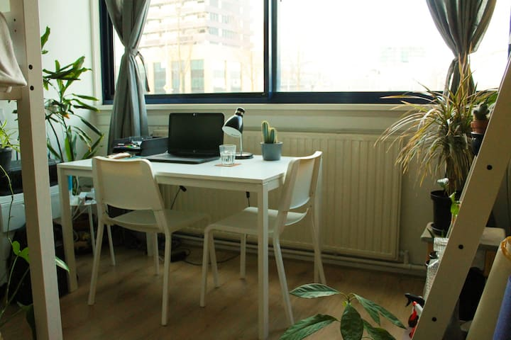 Planty Room to Relax and Work in
